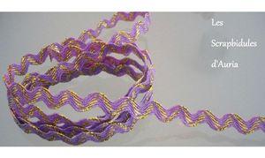 Ric-Rac-Bicolore-ParmeOr-431-2-big-1-www-lesscrapbidulesdauria-kingeshop-com