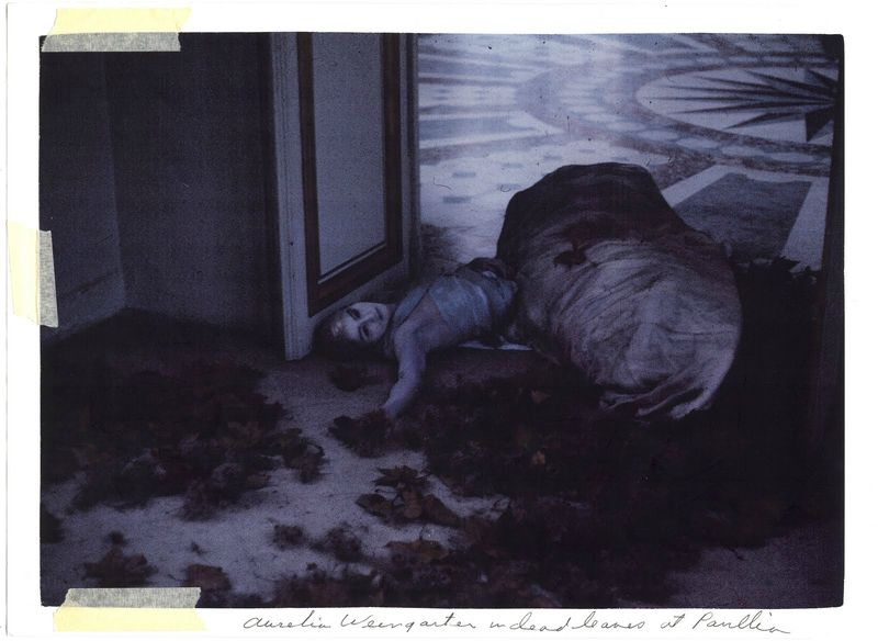 aurelia weingarten in dead leaves deborah turbeville