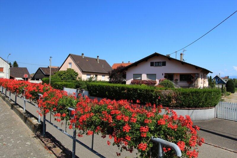 Rummersheim-le-Haut (3)