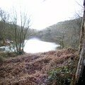 l'étang vu du bas