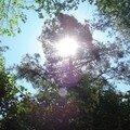 Jeu de soleil pendant la rando