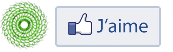 Bouton page facebook