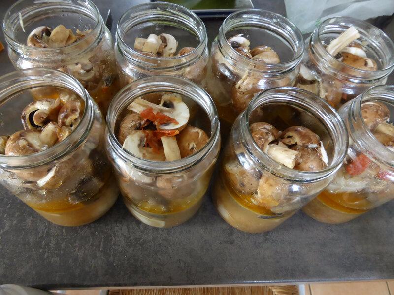 16-conserves viande, conserves paupiettes poulet champignons (2)
