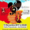 11 novembre : concert pour le mali !