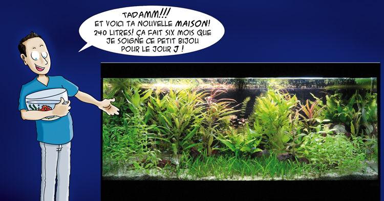 Arthur_et_moi___Aquarium_2_