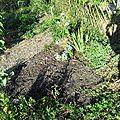 Jardin et annexes du jardin