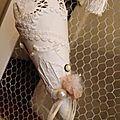 Cône décoration dentelles anciennes