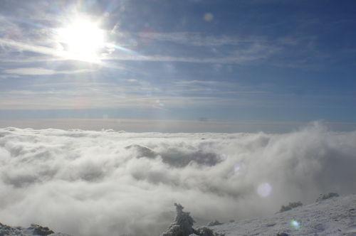 2008 11 20 Photo prise au Mont Mézenc (34)