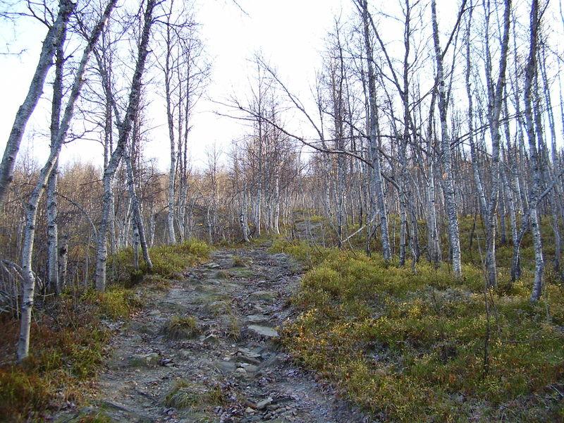 04-10-08 Tromsdalstind et neige (15)