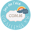 Challenge n°8 com16
