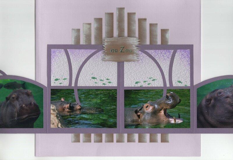 hippopotames 6