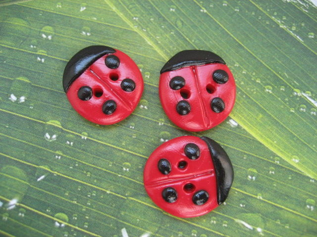 boutons coccinelles
