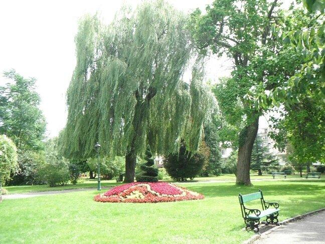 Notre avis le jardin anglais vesoul 2 petits loulous en franche comt balades belles - Jardin anglais neuchatel dijon ...