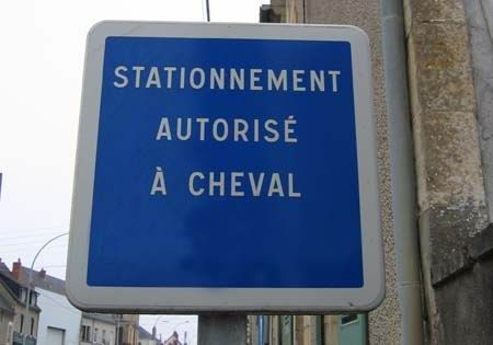 seulement___cheval