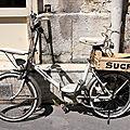 vélo (sucre)_1130