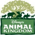 Septembre 2007 - Animal Kingdom