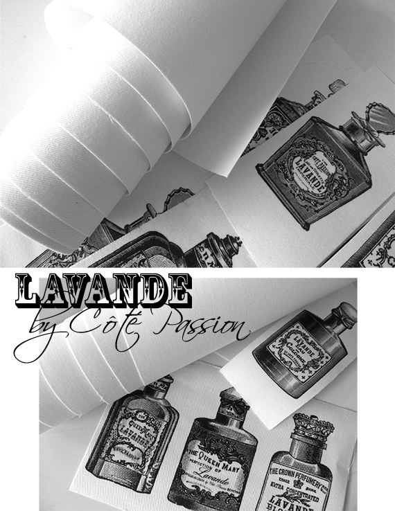 Lavande By Cote passion