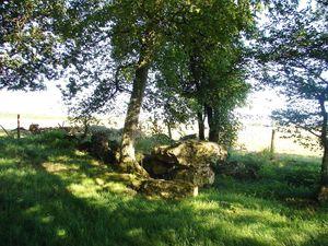 Saint_Martin_du_Lac_dolmen_du_bois_de_Glenne_2