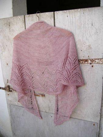 Pink bakau 036
