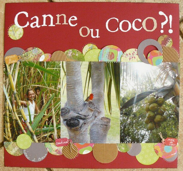 C comme....canne ou coco!