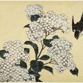 Les fleurs d'hokusai