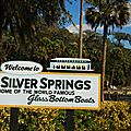 Silver springs Ocala part2+ Juniper springs
