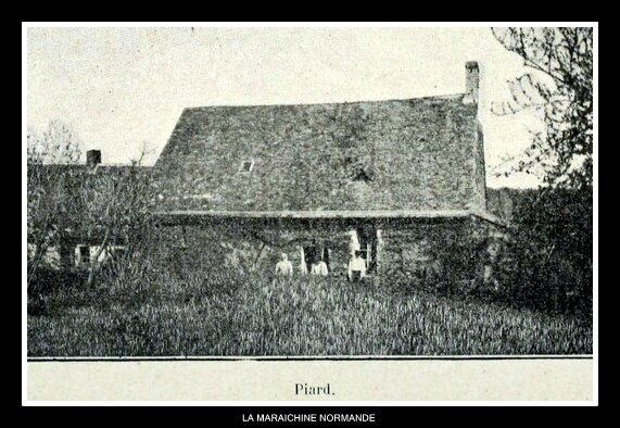 PIARD NOEL PINOT