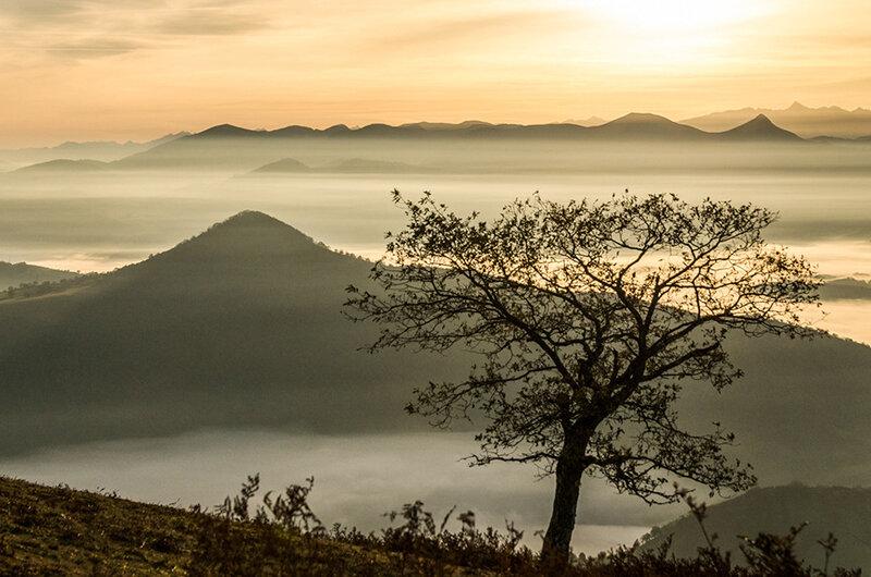 annie Anchartechahar photo format paysage