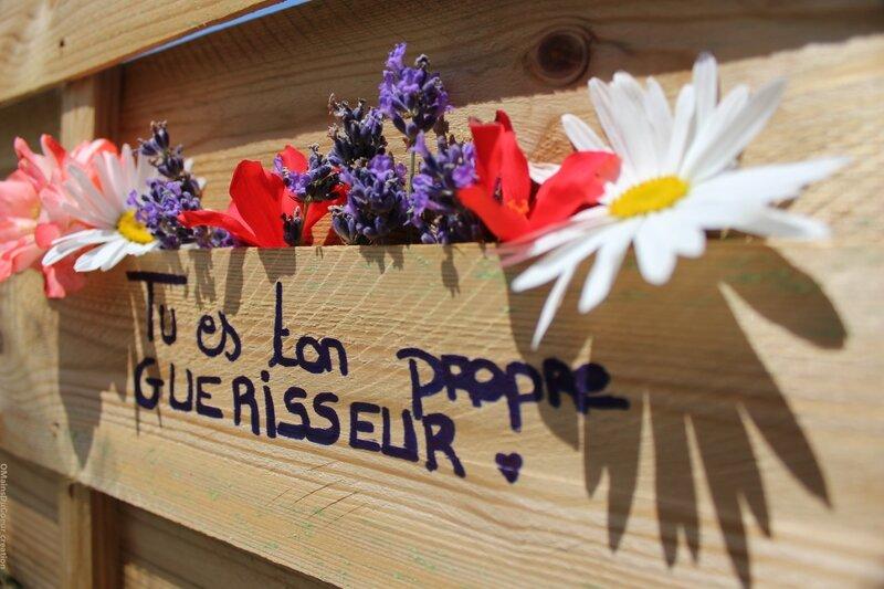 tu_es_ton_propre_guerisseur_pour_le_site_2