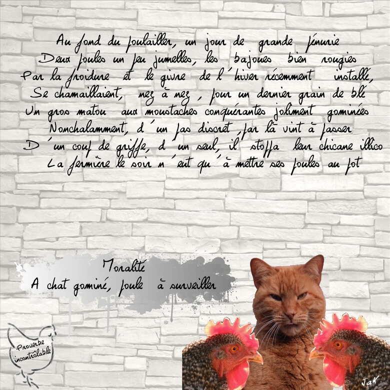 chat gomine