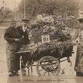 Paris, marchés au fleurs Cartes Postales Anciennes
