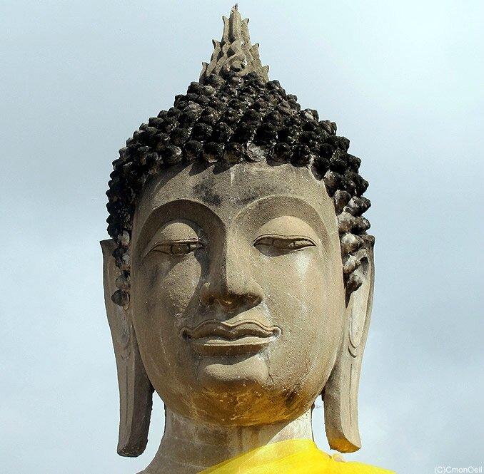 thaiayu11
