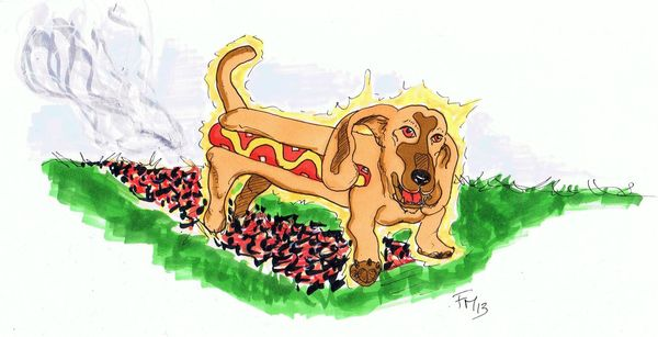 FM_02_Hot DOG