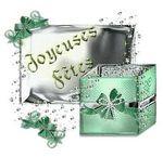 joyeuse_f_ts_b