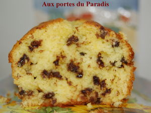 cake_coco_et_chocolat_005