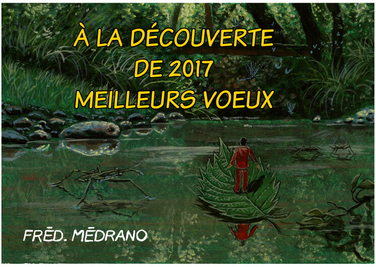 voeux2017