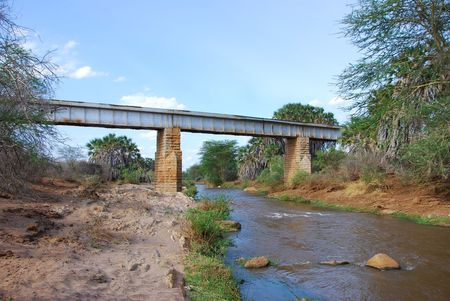 Kenya (794)