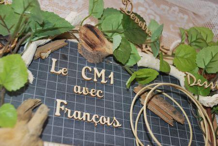 LE_CM1_AVEC_FRANCOIS__4_