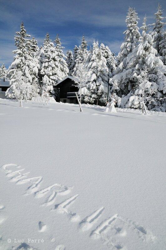 neige_82
