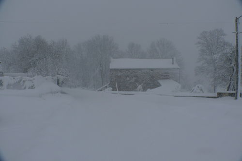 2008 12 14 Tempête de neige en cour