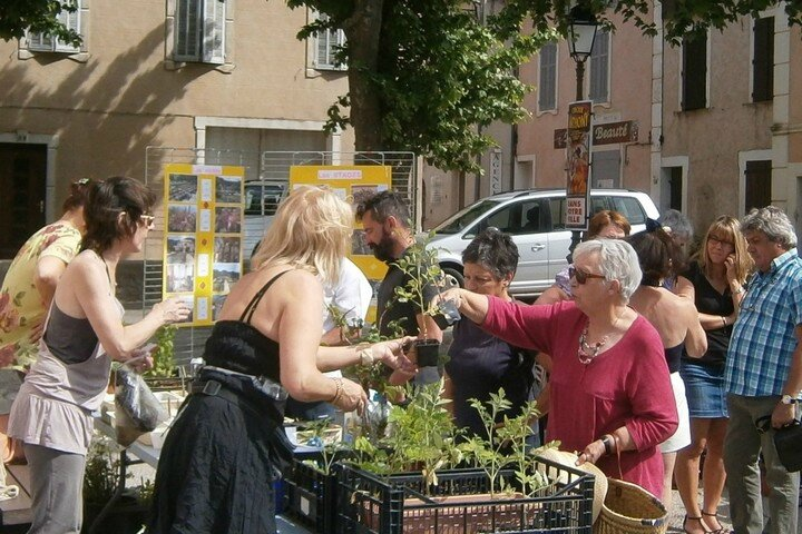 Troc de plantes - Néoules en Fleurs -11 mai 2014 (1)