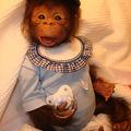 kouky bébé singe reborn n13