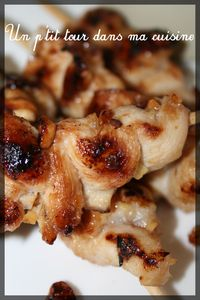 Brochettes_poulet_cacahu_tes2