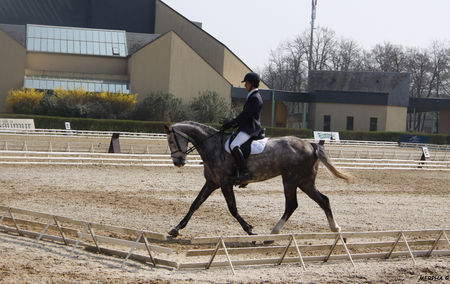 01___Quesnay_sur_le_dressage