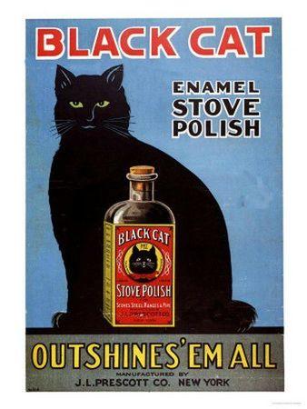 Affiches avec des chats (9)