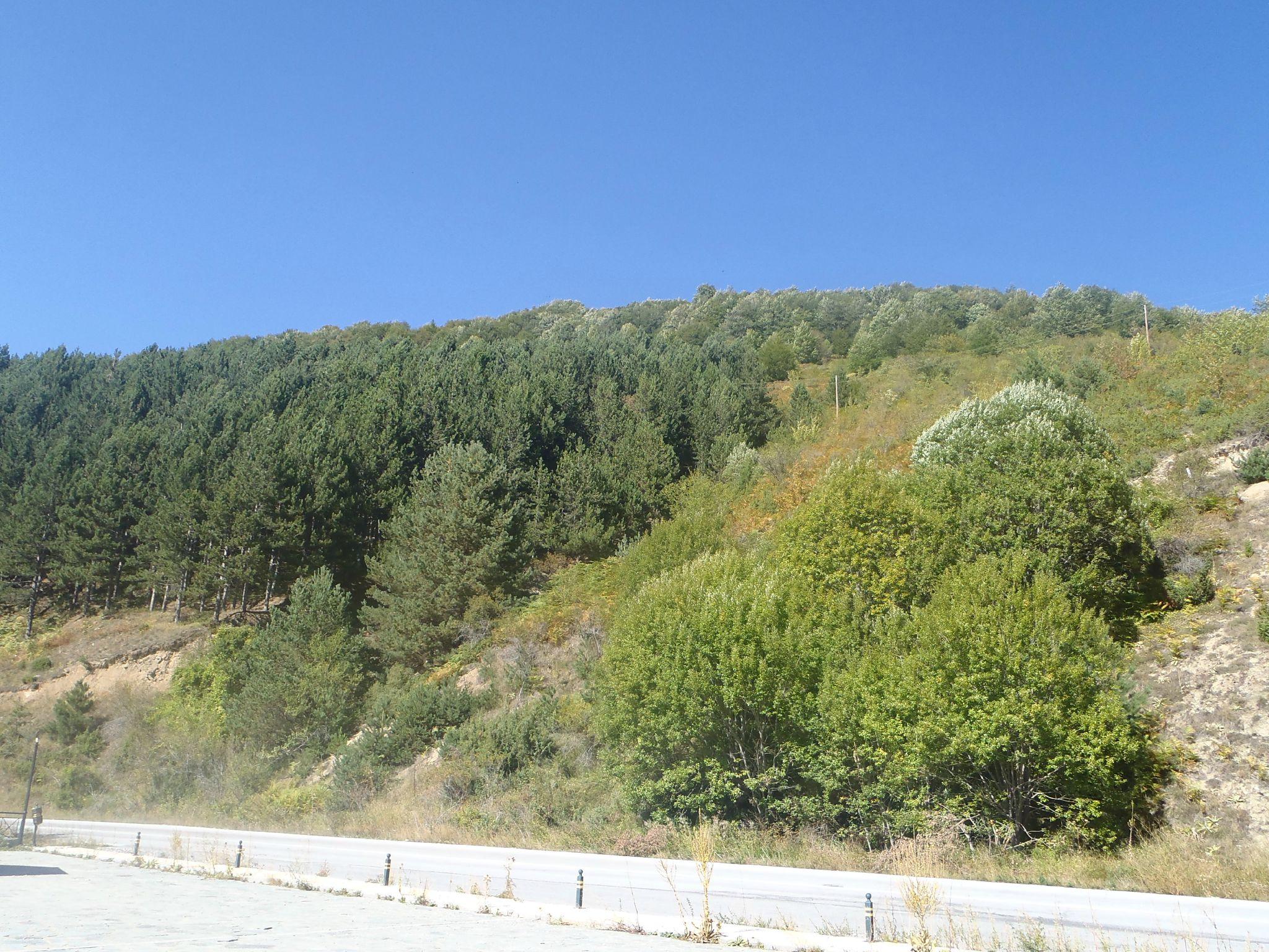 grèce proche macédoine route de montagne
