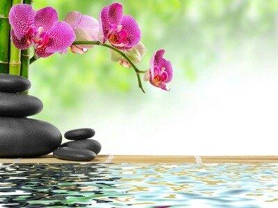 Zen-lâcher-prise-pendant-les-vacances-