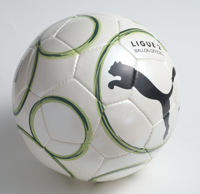 ballon officiel ligue 1 et 2 puma saison 2009 2010 mer monts marais. Black Bedroom Furniture Sets. Home Design Ideas
