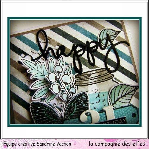 Sandrine VACHON dt LCDE (3)