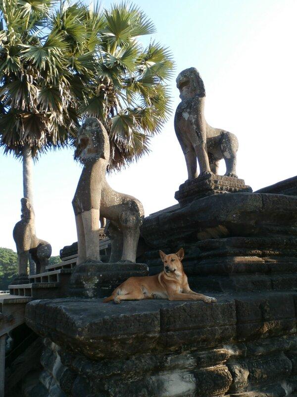 Les gardiens d'Angkor Wat